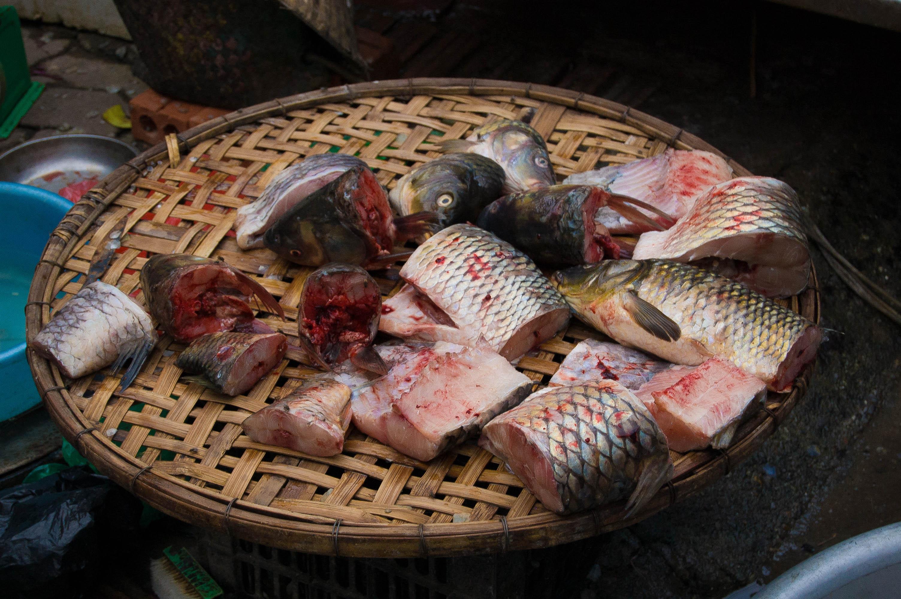 20120927_Vietnam_2893