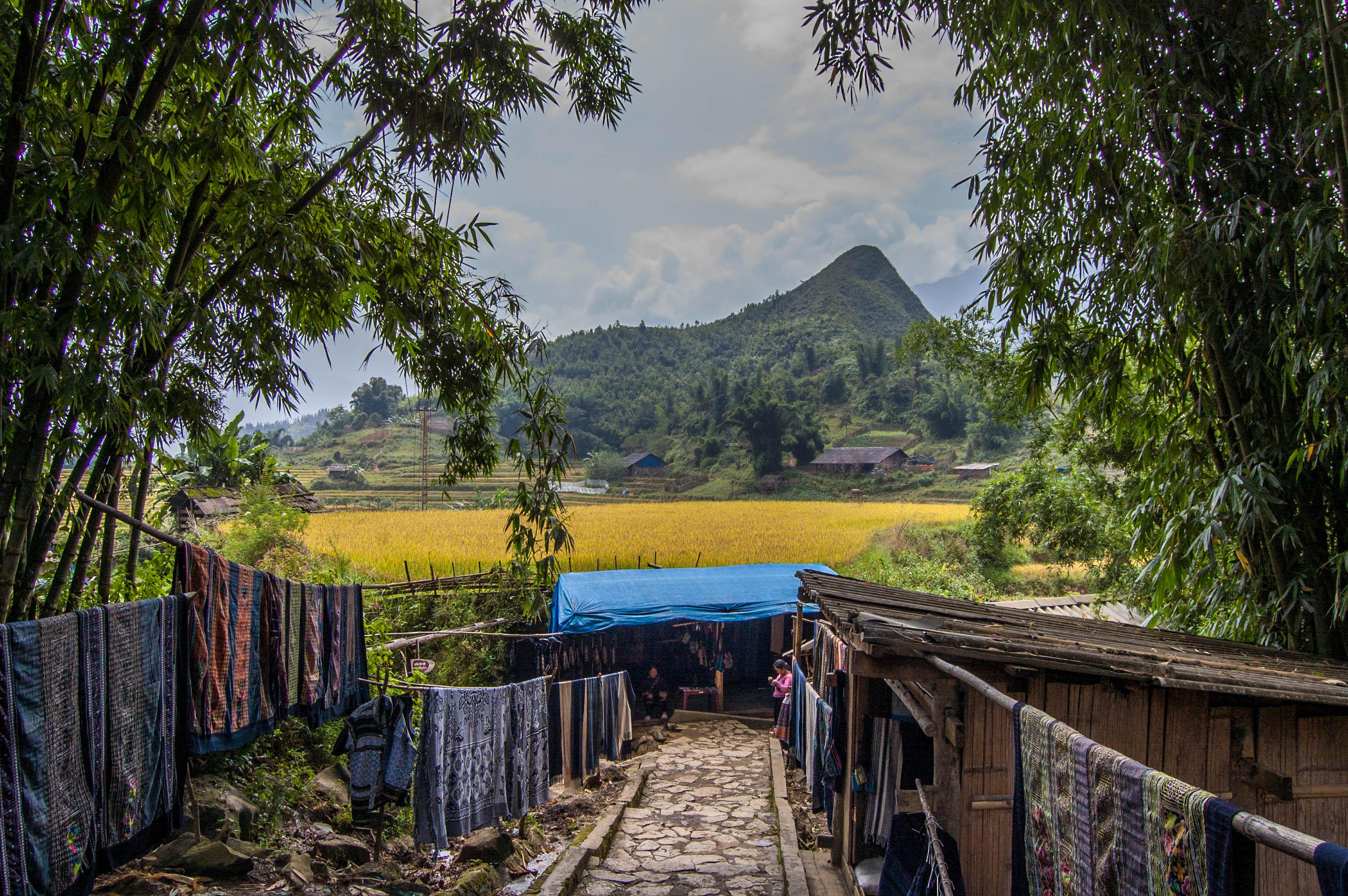 20120929_Vietnam_2498