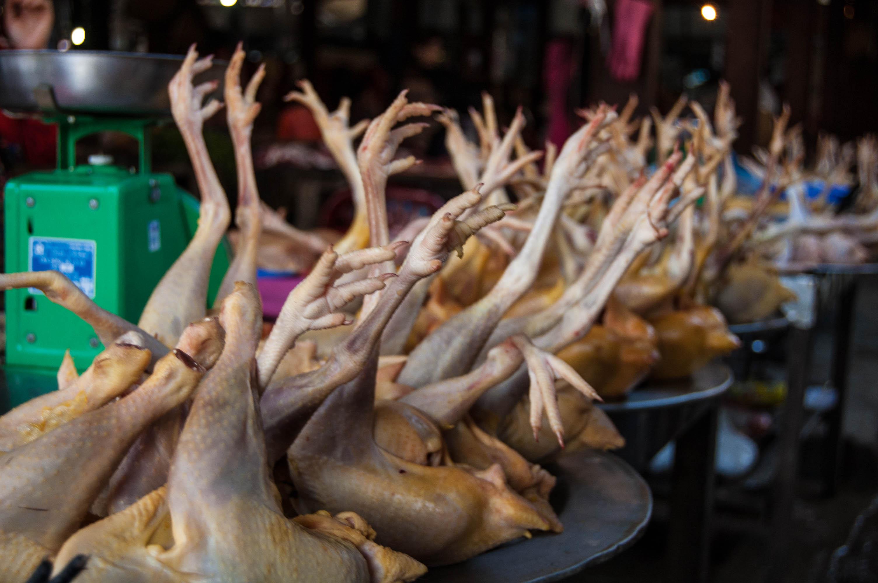 20120929_Vietnam_2688