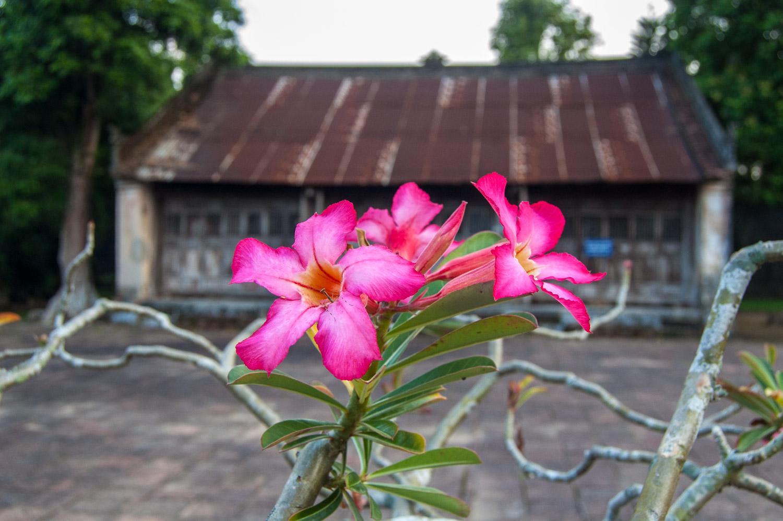 20121005_Vietnam_1495