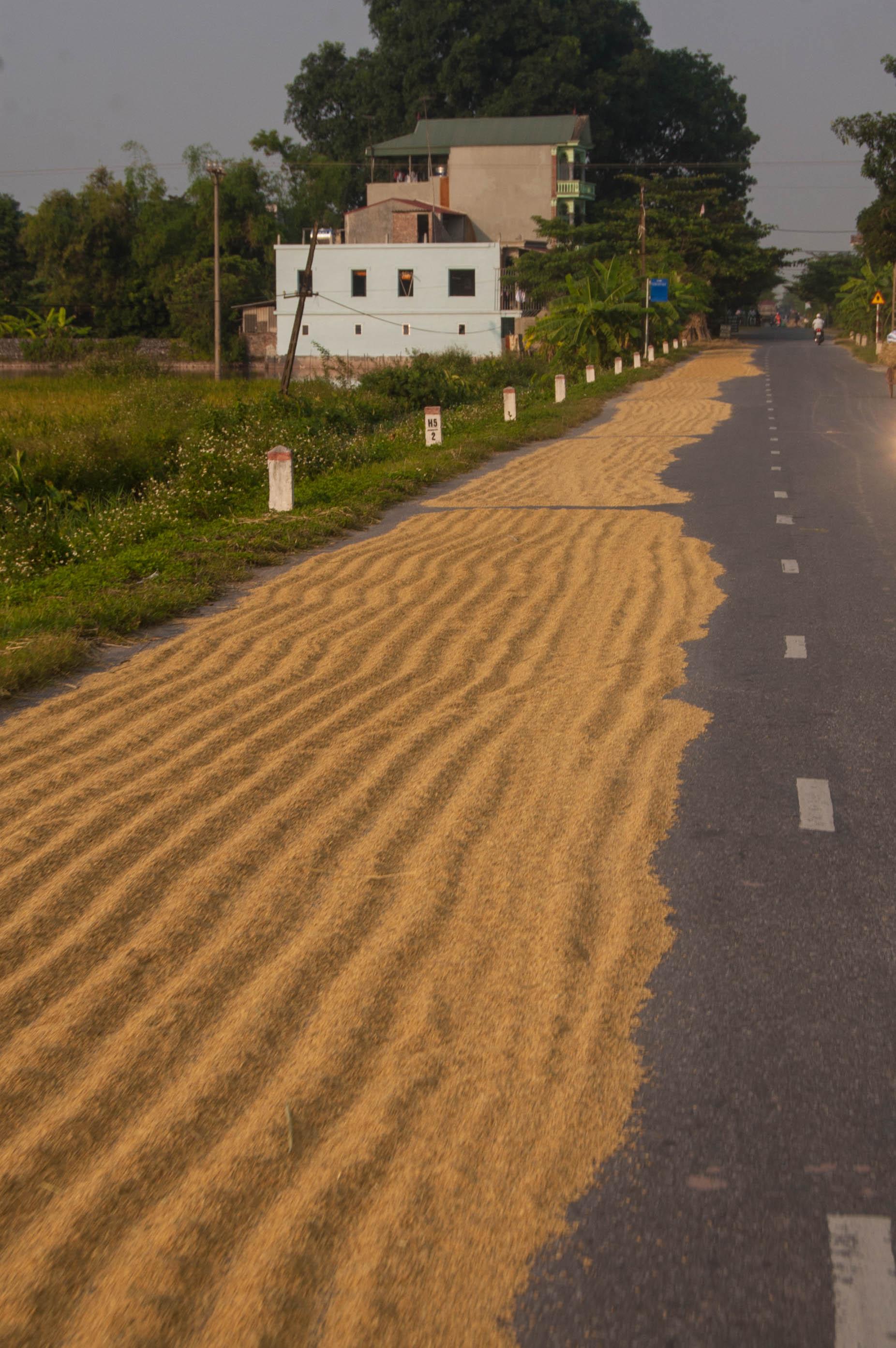 20121001_Vietnam_2404